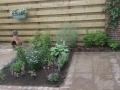 Prunuslaan aanplanting2