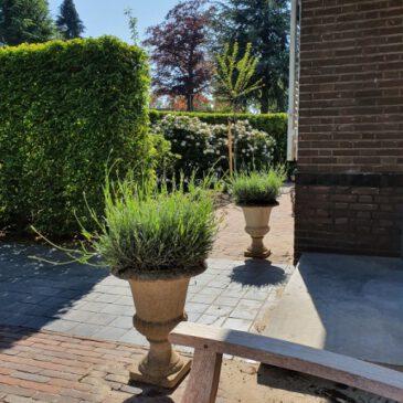 Tuin rondom het huis Bussum